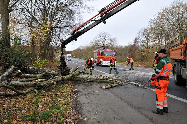 Auch in Marl (NW) kam es zu Sturmschäden. Ein Baum wird von der B 225 beseitigt. Foto: Guido Bludau