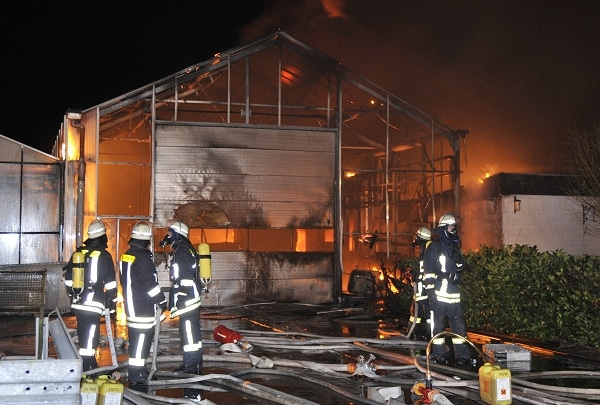 Feuer in Gärtnerei. Foto: Bludau