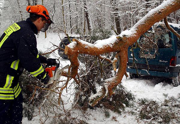 Ein Feuerwehrmann beseitigt bei Halle einen aufgrund der Schneelast umgestürzten Baum. Foto: Jan Möbius