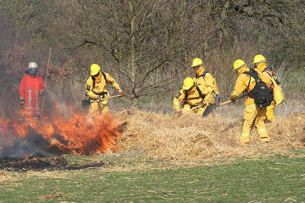 """Praktische Vorführung von """"@fire"""" bei einem simulierten Flächenbrand. Foto: Roßstock/Feuerwehr"""