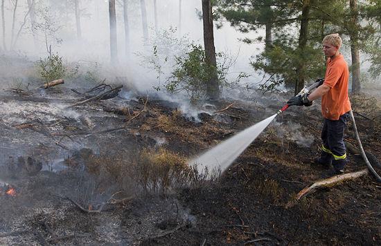 Waldbrand am Montag bei Haltern (NW): rund 10.000 Quadratmeter Fläche verbrannt. Foto: Andre Braune