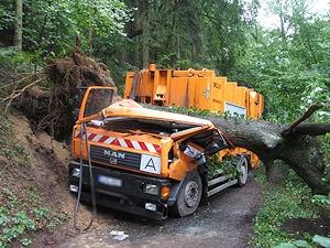 Die Eiche hat das Fahrerhaus des Müllwagens völlig zerstört. Foto: Polizei