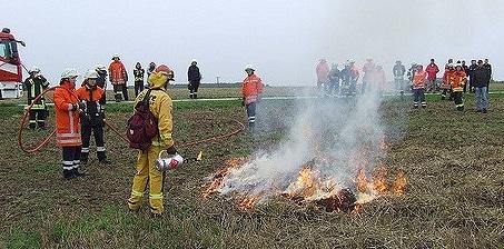 Training zur Vegetationsbrandbekämpfung. Foto: Feuerwehr-Report Nord 2010