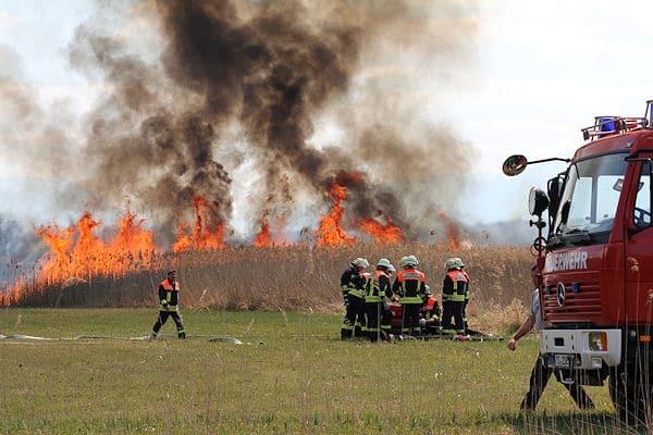 Flächenbrand bei Petting: Meterhohe Flammen schlagen aus einem Schilfgürtel entlang des Waginger Sees. Foto: fib/HL