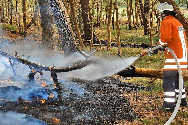 Waldbrand im deutsch-niederländischen Grenzgebiet: Rund 100 Einsatzkräfte waren bei mehreren Feuern im Einsatz. Foto: Stephan Konjer