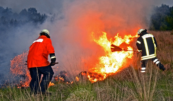 Mit Waldbrandpatschen gehen Feuerwehrleute am Abend des Vatertags gegen einen ausgedehnten Moorbrand in einem Naturschutzgebiet im Kreis Grafschaft Bentheim vor. Foto: Stephan Konjer