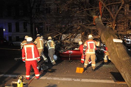Baum auf Pkw in Berlin. Foto: Berliner Feuerwehr