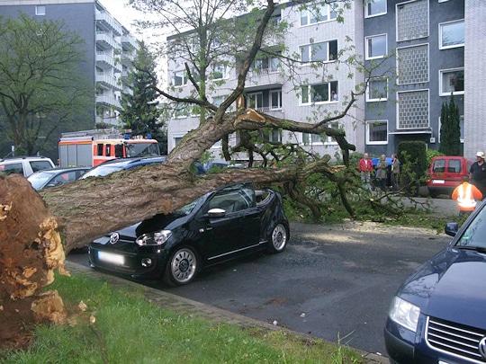 Umgestürzter Baum in Düsseldorf. Der Stamm hat einen fast neuen VW Up völlig zerstört. Foto: Feuerwehr