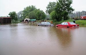 Fahrzeuge im Wasser. Foto: Rebmann/Feuerwehr
