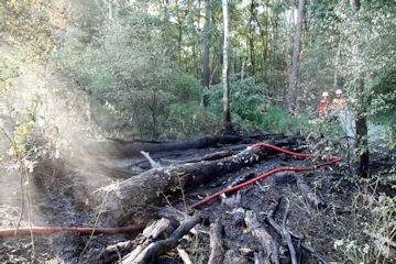 Flächenbrand Nienburg/Weser, einer von zahlreichen Bränden die letzten Tage. Foto: Feuerwehr