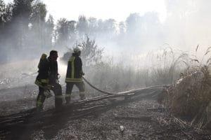 Ein Waldbrand bei Antrifttal zerstört große Waldfläche. Foto: Phillip Weitzel