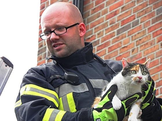 """""""Hab ich Dich."""" Ein Feuerwehrmann hat die anfangs flüchtende Katze auf dem Arm. Foto: Förderverein der FF Nordhorn"""