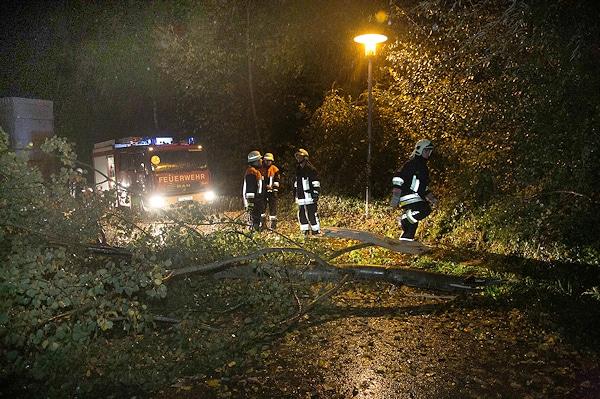 Auch der Kreis Traunstein ist vom Unwetter betroffen. Bei Tacherting-Tettenhausen  muss die Feuerwehr umgestürzte Bäume von der Straße entfernen. Foto: fib/FDL