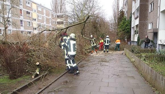 Eine umgestürzte Weide wird vor einem Mehrfamilienhaus in Laatzen beseitigt. Foto: Senft/Feuerwehr
