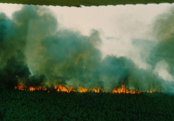 Als die Heide brannte. Foto: Kreisfeuerwehrverband Lüchow-Dannenberg