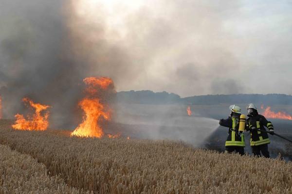 Flächenbrand_Einsatz_Feuerwehr_Waldbrand_Tipps_Taktik_Vorgehen_IV