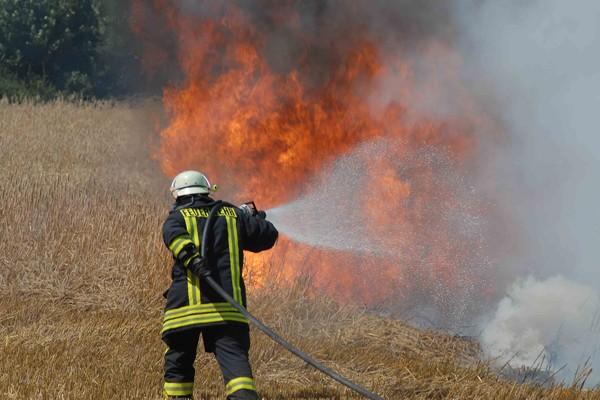 Flächenbrand_Einsatz_Feuerwehr_Waldbrand_Tipps_Taktik_Vorgehen_II