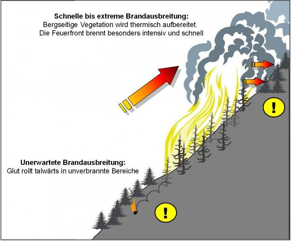 Flächenbrand_Einsatz_Feuerwehr_Waldbrand_Tipps_Taktik_Vorgehen_VII