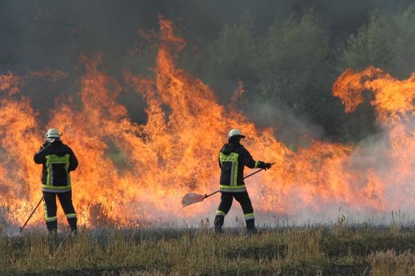 """Wir suchen Bilder für das Sonderheft """"Wald- und Flächenbrandbekämpfung"""". Foto: Timo Jann"""