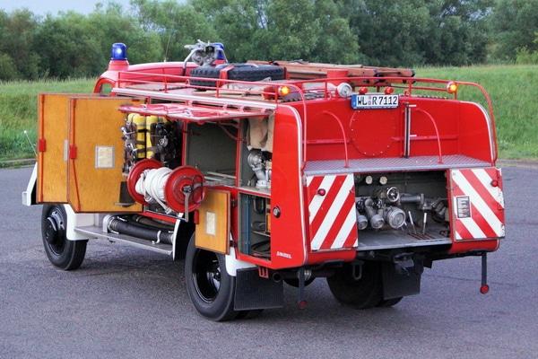 TLF-6