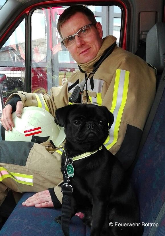 Die Feuerwehr entdeckte einen Hund in einem verunfallten Lkw. Foto: Feuerwehr Bottrop