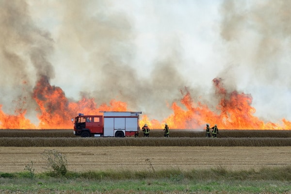 Heftige Windböen ließen die Flammen eines Feldbrandes bei Ditfurt am Montag bis zu fünf Meter hoch aufsteigen. Foto: Mücke