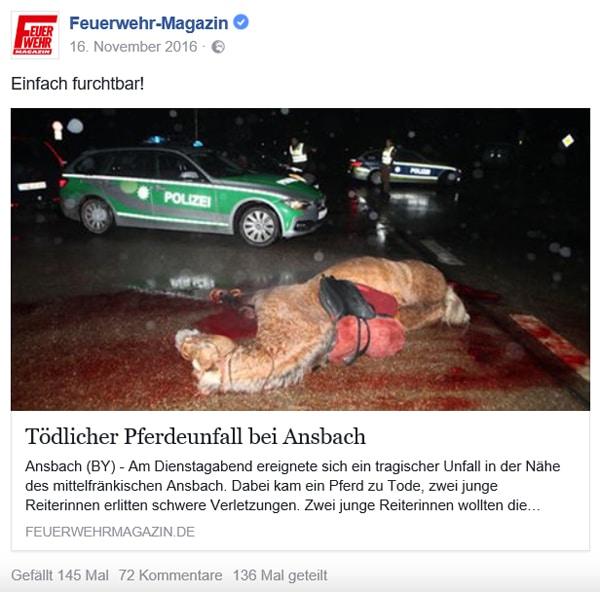 Dieses Foto sorgte für hitzige Diskussionen bei unseren Usern: Facebook-Post des Feuerwehr-Magazins. Foto: News5/Haag
