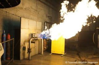 Gas Flammen