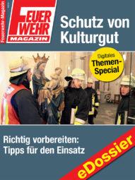 Produkt: PDF-Download: Download Schutz von Kulturgut