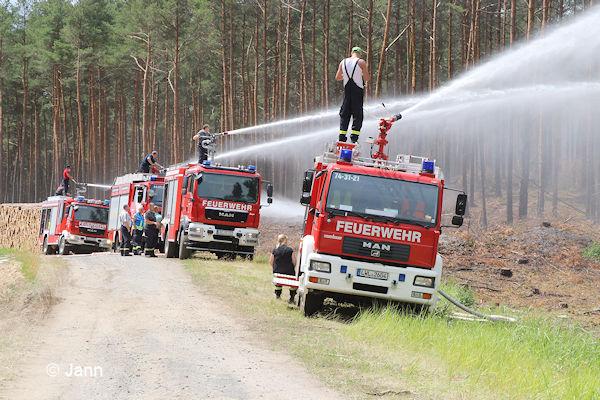 Waldbrand Harz