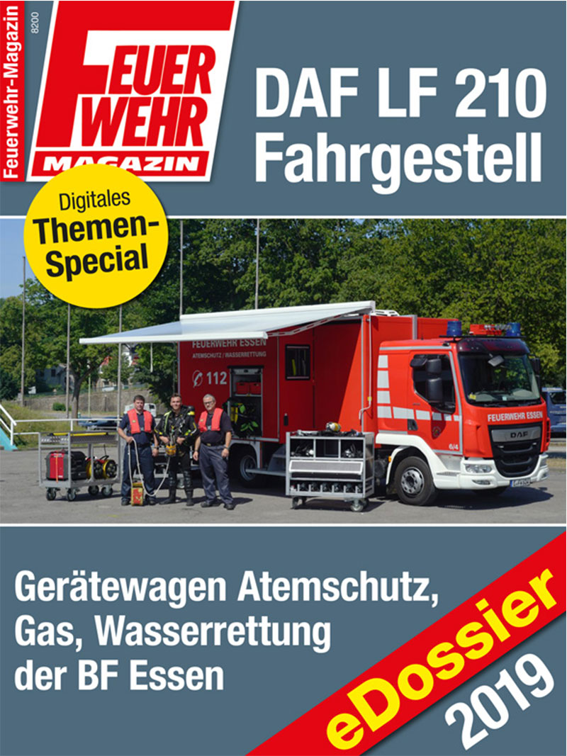 Produkt: Download: DAF LF 210 Fahrgestell